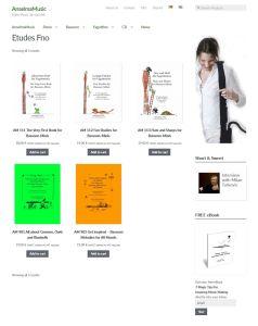 webshop wordpress wien